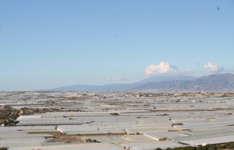 Het landschap rond Almeria wordt gedomineerd door plastic teelttunnels. Door de weerkaatsing van het zonlicht is in dit gebied de temperatuur juist gedaald.
