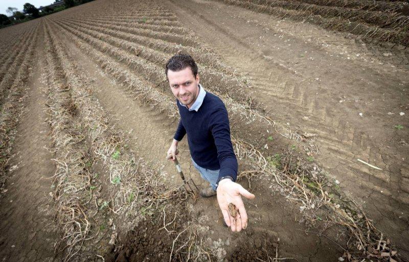 Daan Janssen op zijn perceel vol verrotte aardappelen.