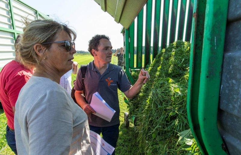 Om maximaal te profiteren van de grasopbrengst, zijn Els en Gerard Uijterlinde in Deurningen overgestapt op zomerstalvoeren.