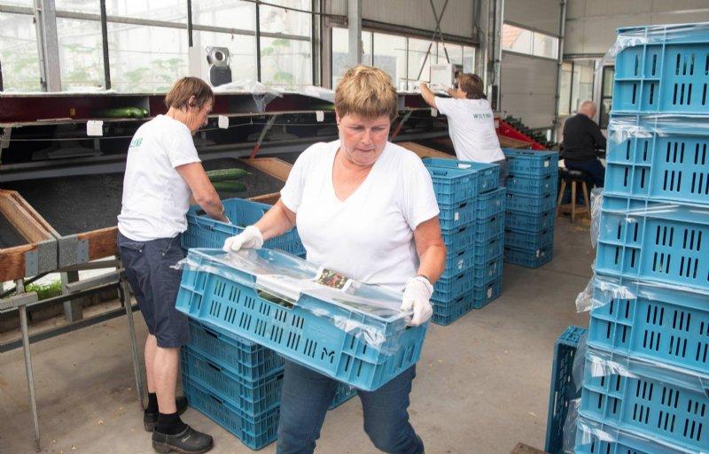 De kwekerij heeft een vast team van betrokken medewerkers.