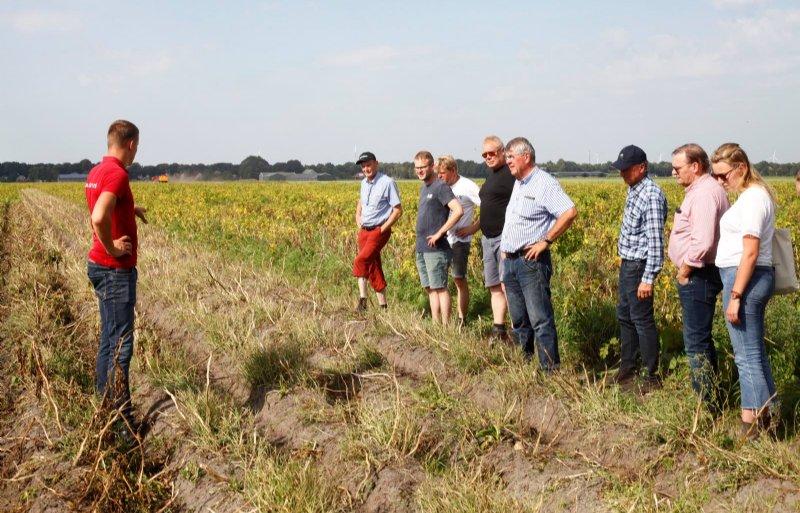 Delphy-adviseur Jaap Grezel laat aardappeltelers de resultaten zien van elektrische loofdoding.