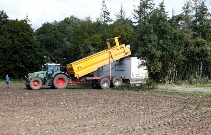 Witlofpennen overladen in vrachtwagen in Zeeland (N.B.)