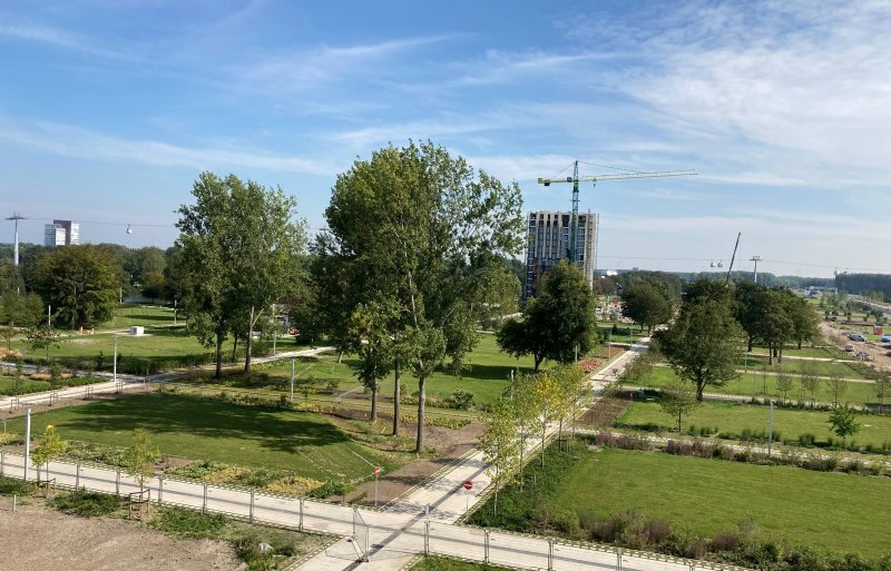 Het arboretum vormt de groenstructuur van de kavels in de toekomstige stadswijk Hortus.