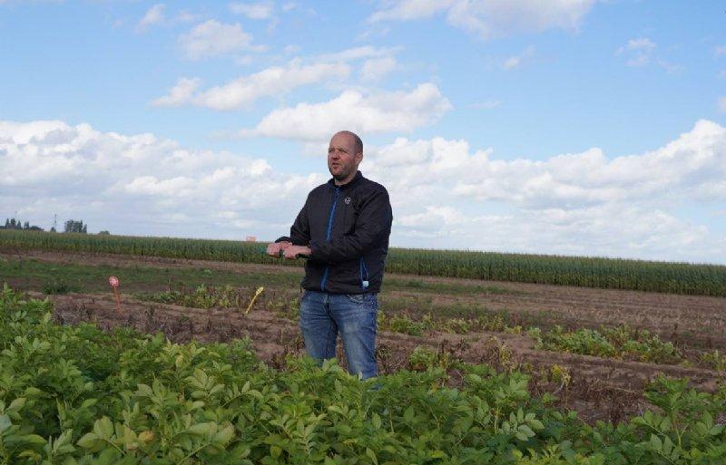 Sjors Leermakers: 'Alternaria komt - ondanks de relatief lage zomertemperatuur - behoorlijk veel voor in de gewassen. En niet zelden veroorzaakt dat flinke schade.'