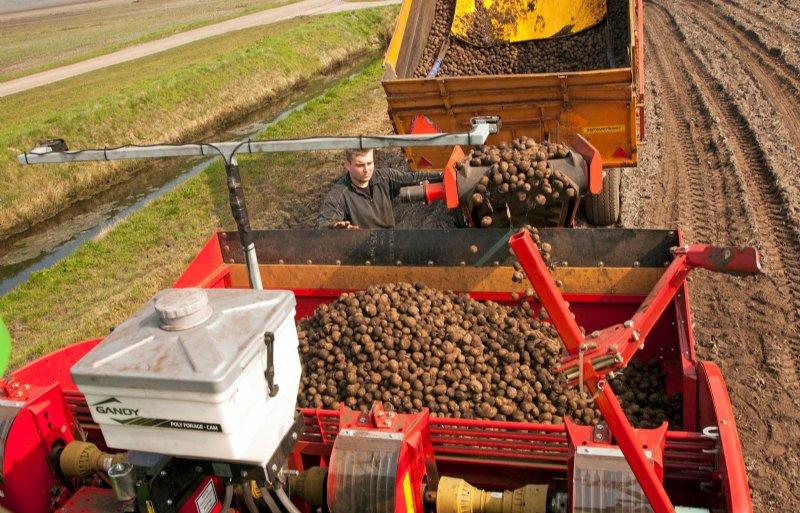 De economie drijft voor een groot deel op de landbouw.