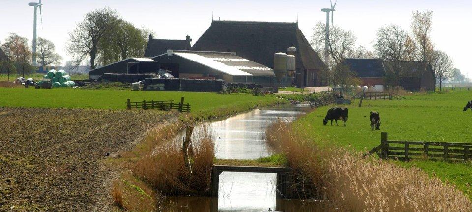 Rem op groei agrarische sector door stikstofbeleid - NieuweOogst.nu