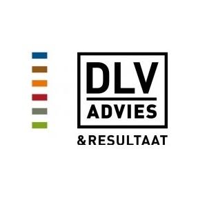 DLV Advies
